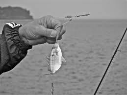 Image result for fisherman small catch fish